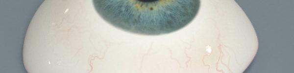 Prosthetic Eye
