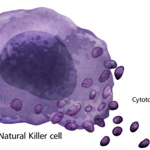 Immunotherapy MOA Illustrations